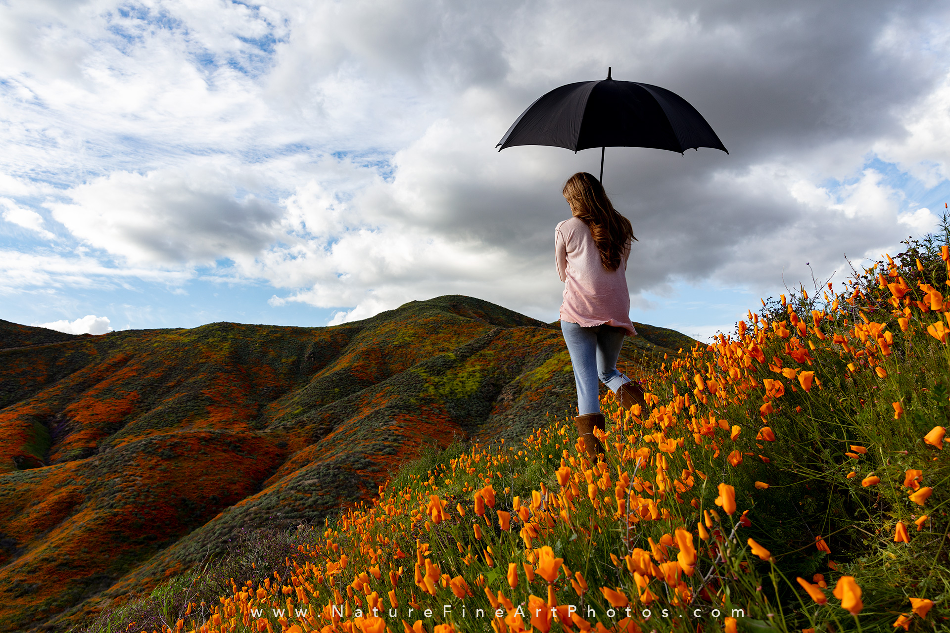 beautiful woman in poppies with umbrella