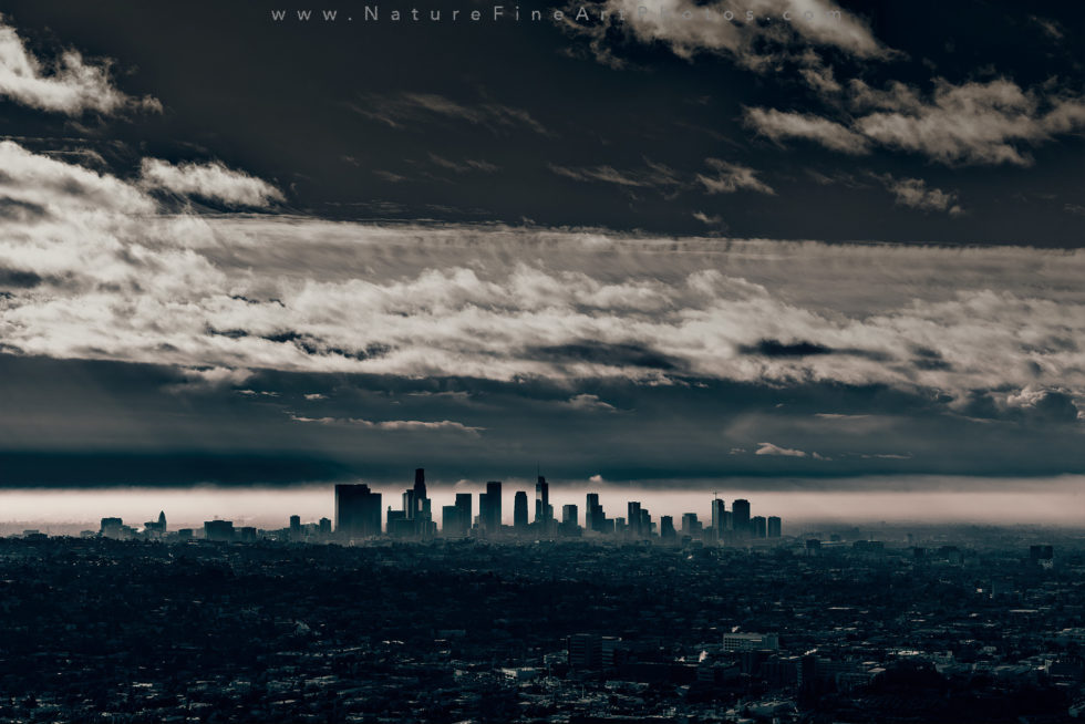 view of downtown LA black and white